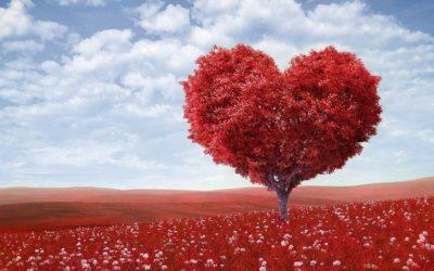 Walentynki a związki i miłość